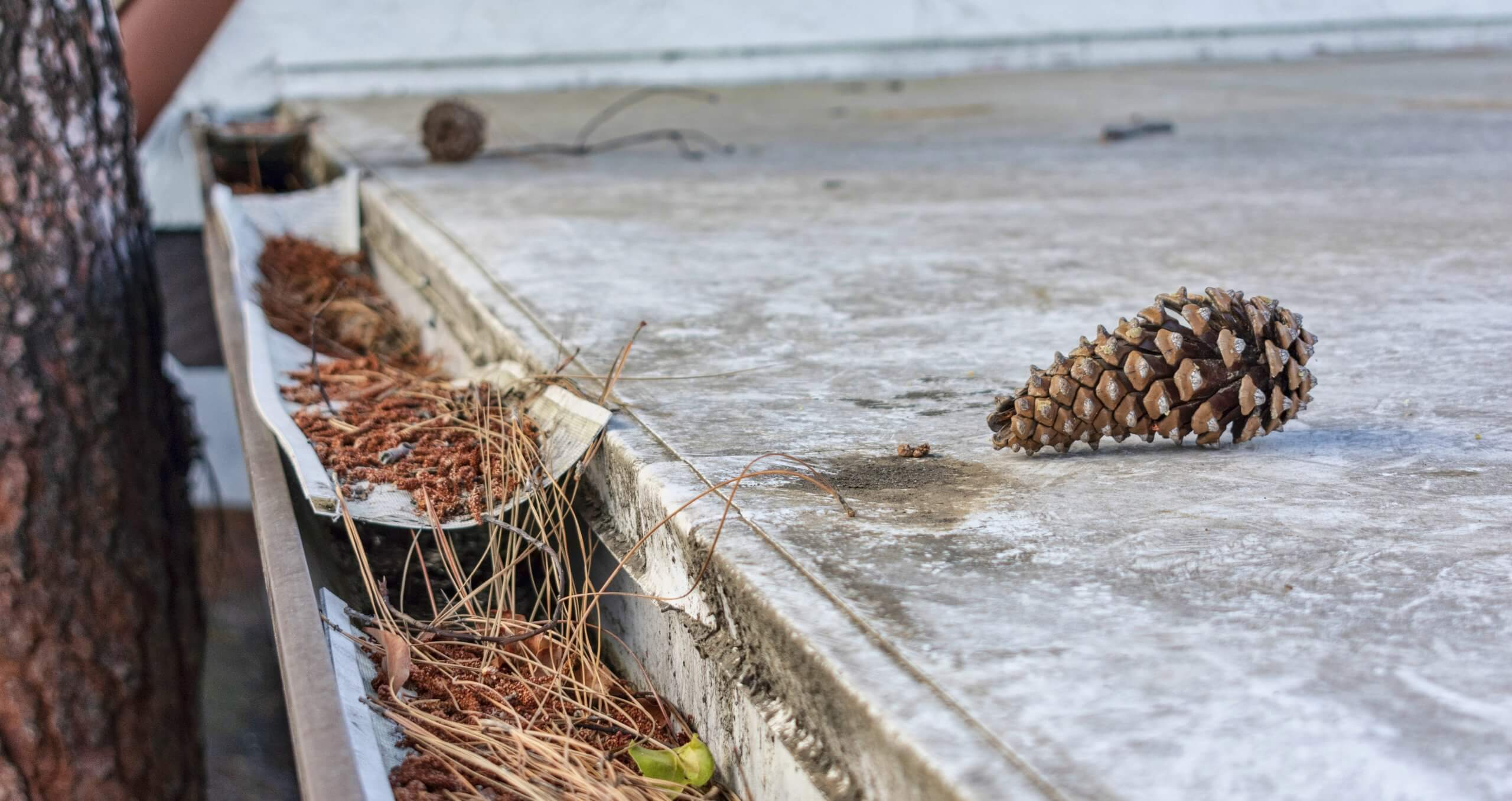 Roofing Checklist for Spring Cleaning
