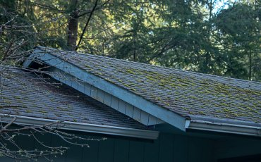 Should I buy a house with an old roof?